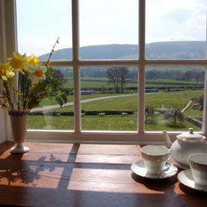Bild Blick vom Frühstücksraum aus