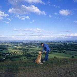 Bild Reisen mit Hund