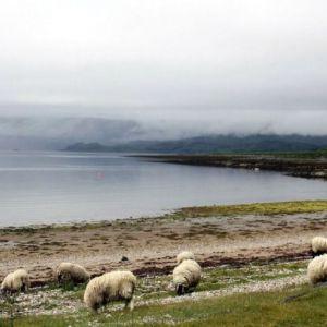 Bild Traumhafte Kulisse am Loch Ness