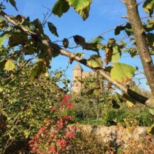 Bild Sissinghurst