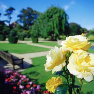 Highlights und Insidertipps unserer Gartenreisen n