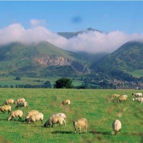 Dartmoor Nationalpark - Kulisse des Streifens 'Das Ende eines Sommers'