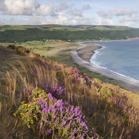 An den romantischen Küsten Cornwalls hat schon so mancher Darsteller sein Herz verloren...