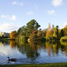 Im Sheffield Park entspannen auf der Gartenreise durch Südengland