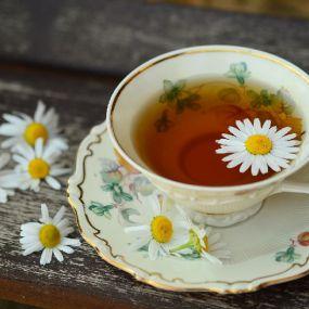 Tea Time in der Natur - Gartenreise England
