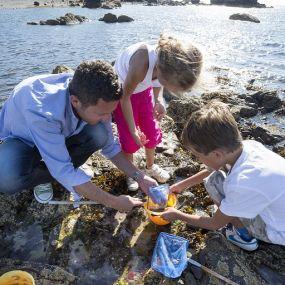 Mit der Familie Tiere entdecken, Ayrshire