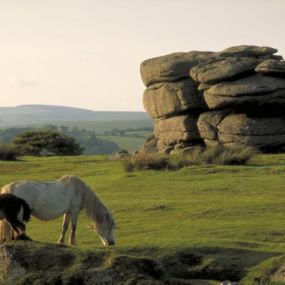 Der Dartmoor Nationalpark