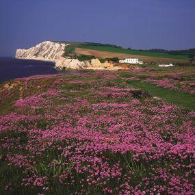Auf los geht's los!!! - Wanderurlaub auf der Isle of Wight
