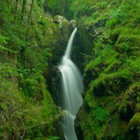 Ihre Wanderwege führen vorbei an rauschenden Wasserfällen.