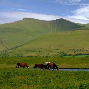 Brecon Beacons Nationalpark