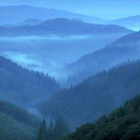 Wenn am frühen morgen die Nebelschwaden durch die Täler ziehen...