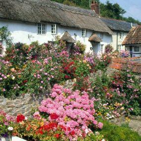 Cottages & Blütenprachten - man fühlt sich fast selbst wie in einem Pilcher-Roman