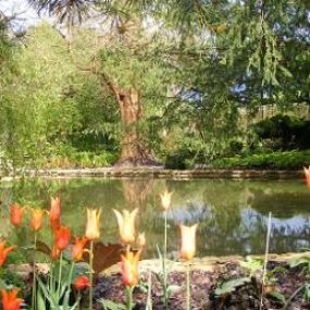 Courts Garden - ein Muss auf Ihrer Reise