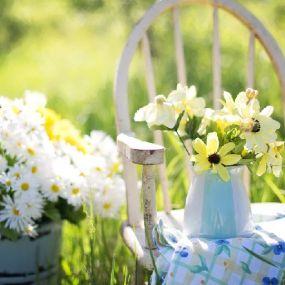 Zeit zum Durchatmen - Gartenreise England