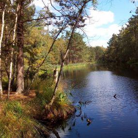 Beeindruckende Moorlandschaften in Nordengland