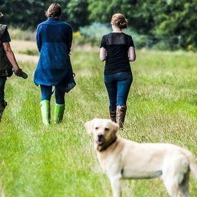 Den South West Coast Path mit Ihrem Hund erleben