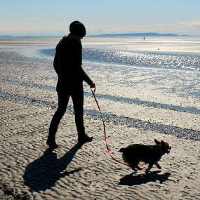 Meilenweit am Strand entlang laufen