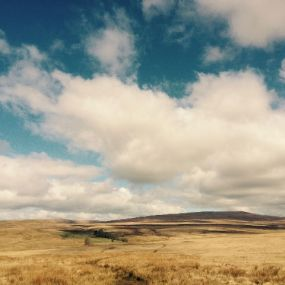 Fahrt durch Wales