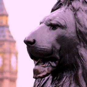 Erleben Sie die Hauptstadt  Großbritanniens!