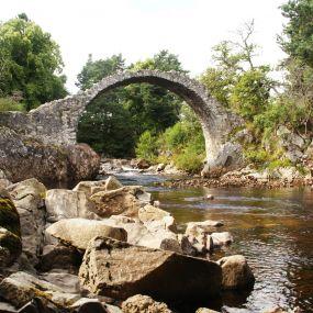 Im Cairngorms Nationalpark erwartet Sie eine magische Landschaft.